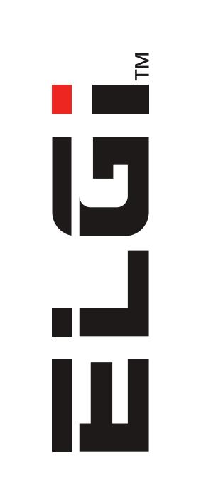 ELGI-logo-e1613391926136.png